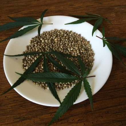 How to Select the Most Appropriate Cannabis Seed?
